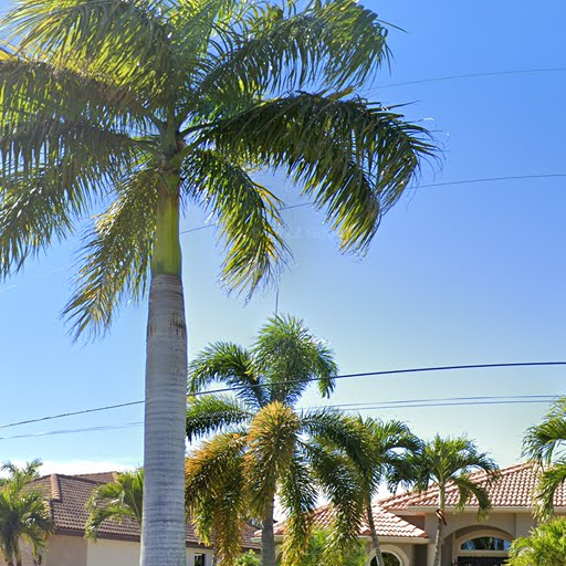 2br 2 0ba In 5411 Sw 2nd Place Cape Coral Fl Apartments For Rent