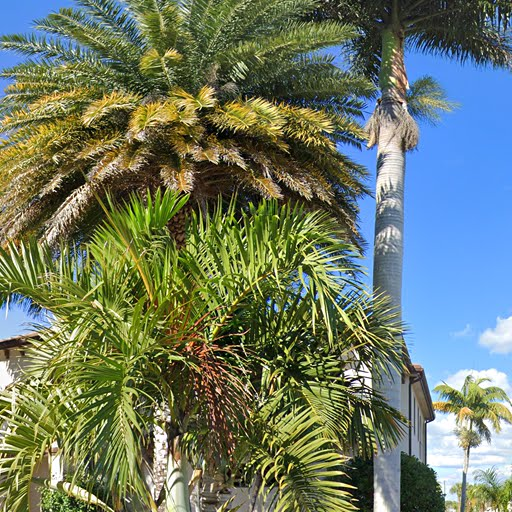 3br 2 0ba In 2815 Se 19th Place Cape Coral Fl Apartments For Rent