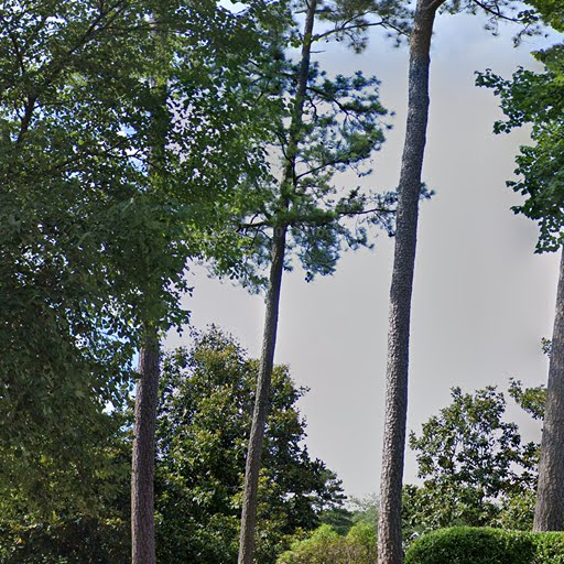 Regency Place Apartments Raleigh Nc: Durham, NC Apartments For Rent