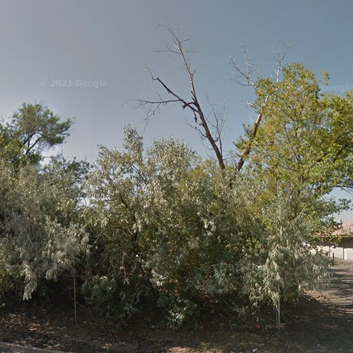 Homes For Rent Near Alamosa Co